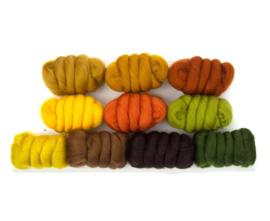 Herfstbladeren kleurenset 23 micron 10 kleuren a 25 gram per pakket