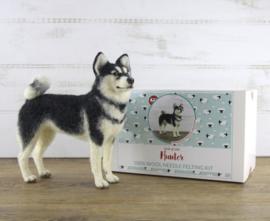 Naaldviltpakket Husky Hunter (engelstalig) per pakket