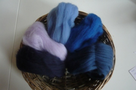 Kleurenset 5 blauwtinten 27 mic