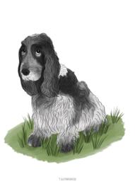 Lijntekening huisdier met kleur, vanaf 40,-