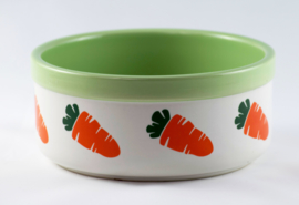 Food bowl with carrot design green