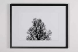 Oak  (kader 30 x 40 cm)