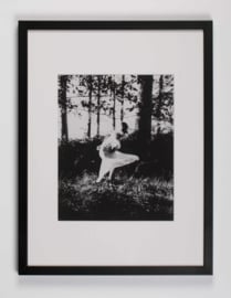Ghost (kader 32 x 42 cm)
