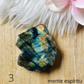 Labradoriet Schijf (3)