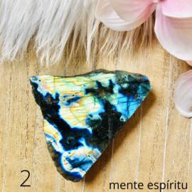 Labradoriet Schijf (2)