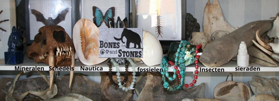 Bonesandstones
