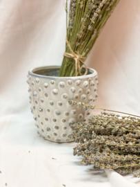Stoneware flowerpot | Cream