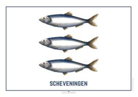 Het wapen van Scheveningen - Poster A4