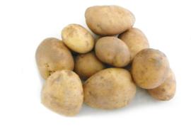 Frieslander aardappelen netzak 10 kg