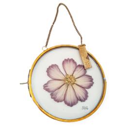 Droogbloemen lijst - Flowerframe M - paars