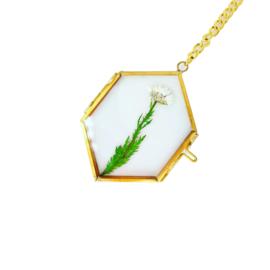 Mini gedroogde bloemen in gouden lijstje - Witte bloem