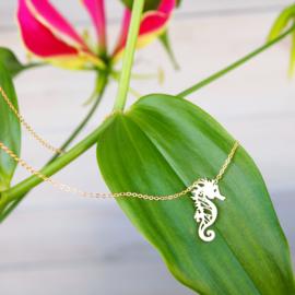 Goudkleurige ketting - Seahorse - Lolilota