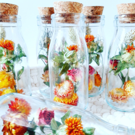 Dried Flowers - Naturel of Autumn