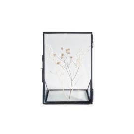 Droogbloemen in fotolijst OLDGREY - Grassen