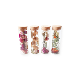 Droogbloemen buisje - Vier varianten