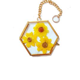 Mini gedroogde bloemen in gouden lijstje - Zonnig