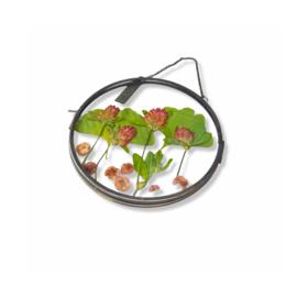 Droogbloemen lijst - Flowerframe L - klaver