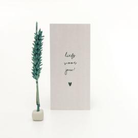 Droogbloemen boodschap - Liefs voor jou