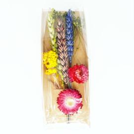 Droogbloemen - mini bouquet