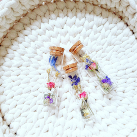 Dried flowers in a tube - XS