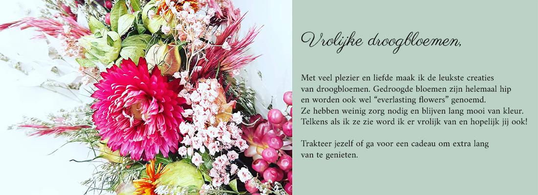 Droogbloemen, gedroogde bloemen, everlasting flowers.