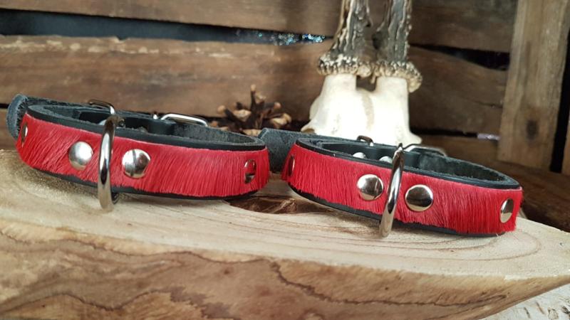 Zwarte band met rode vacht 2 cm.