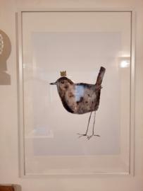 lucky bird in kader groot