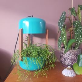 Plant lamp | LJ Maakt