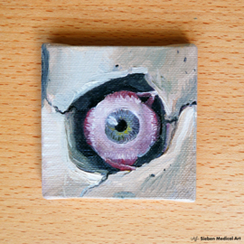 Anatomie van het oog mini olieverf op doek schildering