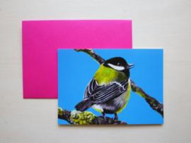 Koolmees kaart met gekleurde envelop