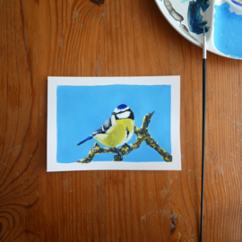 Blue tit gouache painting