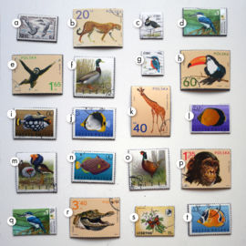 Vintage postage stamp magnets with animals