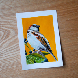House sparrow gouache painting