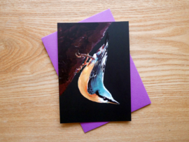 Nuthatch postcard with envelope