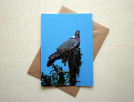 Wood pigeon card with envelope