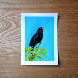 Blackbird gouache painting