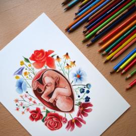 Floral fetus A4 art print
