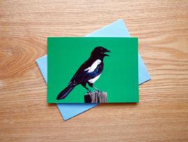 Tuinvogel kaarten, set van 10