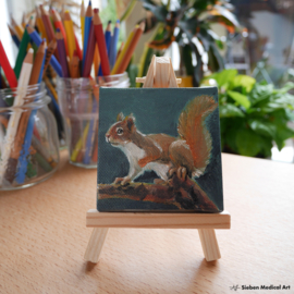 'Squirrel' tiny oil painting on canvas, 7x7 cm