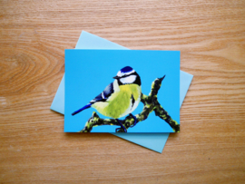 Blue tit postcard with envelope