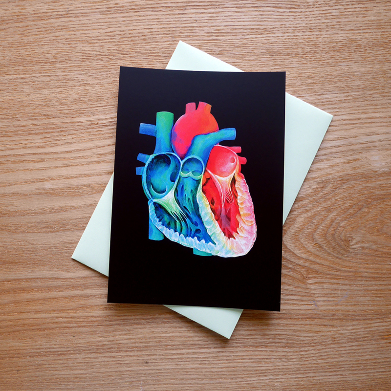 Heart anatomy greeting card with envelope