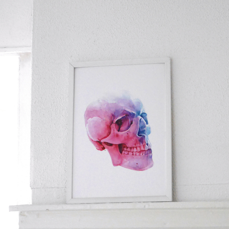 Aquarel Schedel A4 artprint