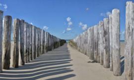 Strandpalen NW5533