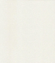 Papierbehang NW150640