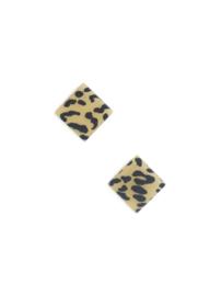 Molteno leopard
