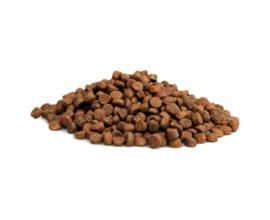 Graanvrije brok zalm 2kg