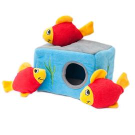 Zippy Burrows Aquarium
