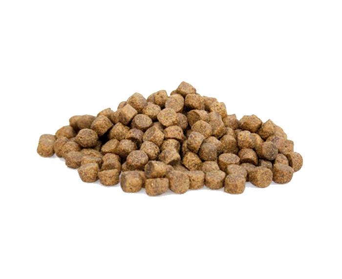 Super Premium (krokant) Zalm en Aardappel 20kg