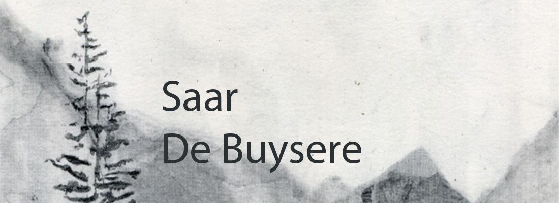 Saar De Buysere