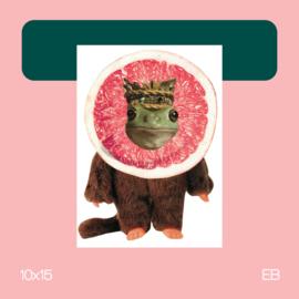 Fruitige Bere Kikker | collage | 10x15 | EB